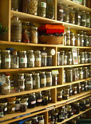medicinal herbs and integrative medicine