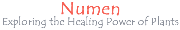 Numen: The Healing Power of Plants -